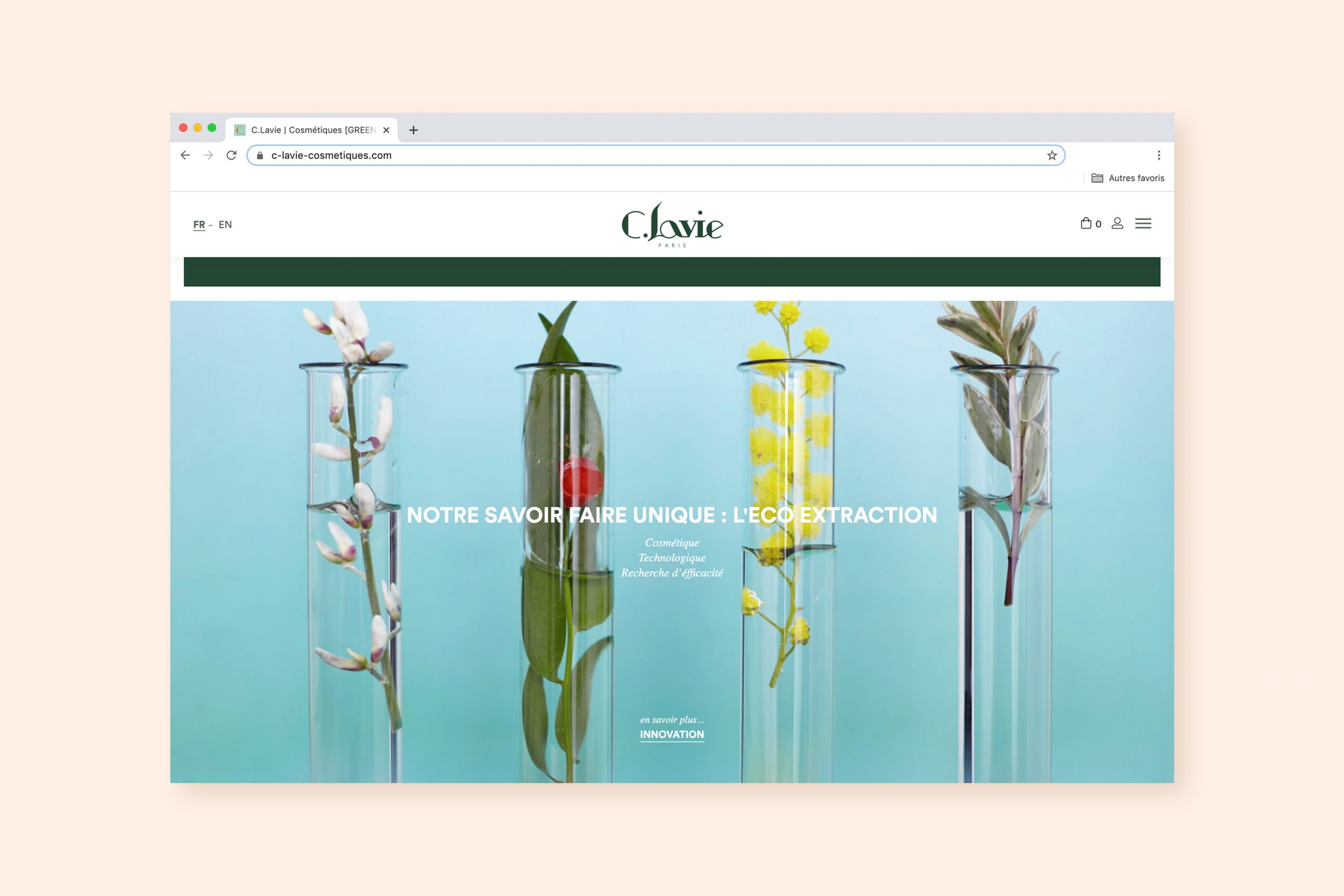 homepage site C.lavie