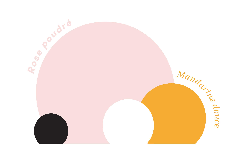 charte couleurs blissim nouvelle identité birchbox