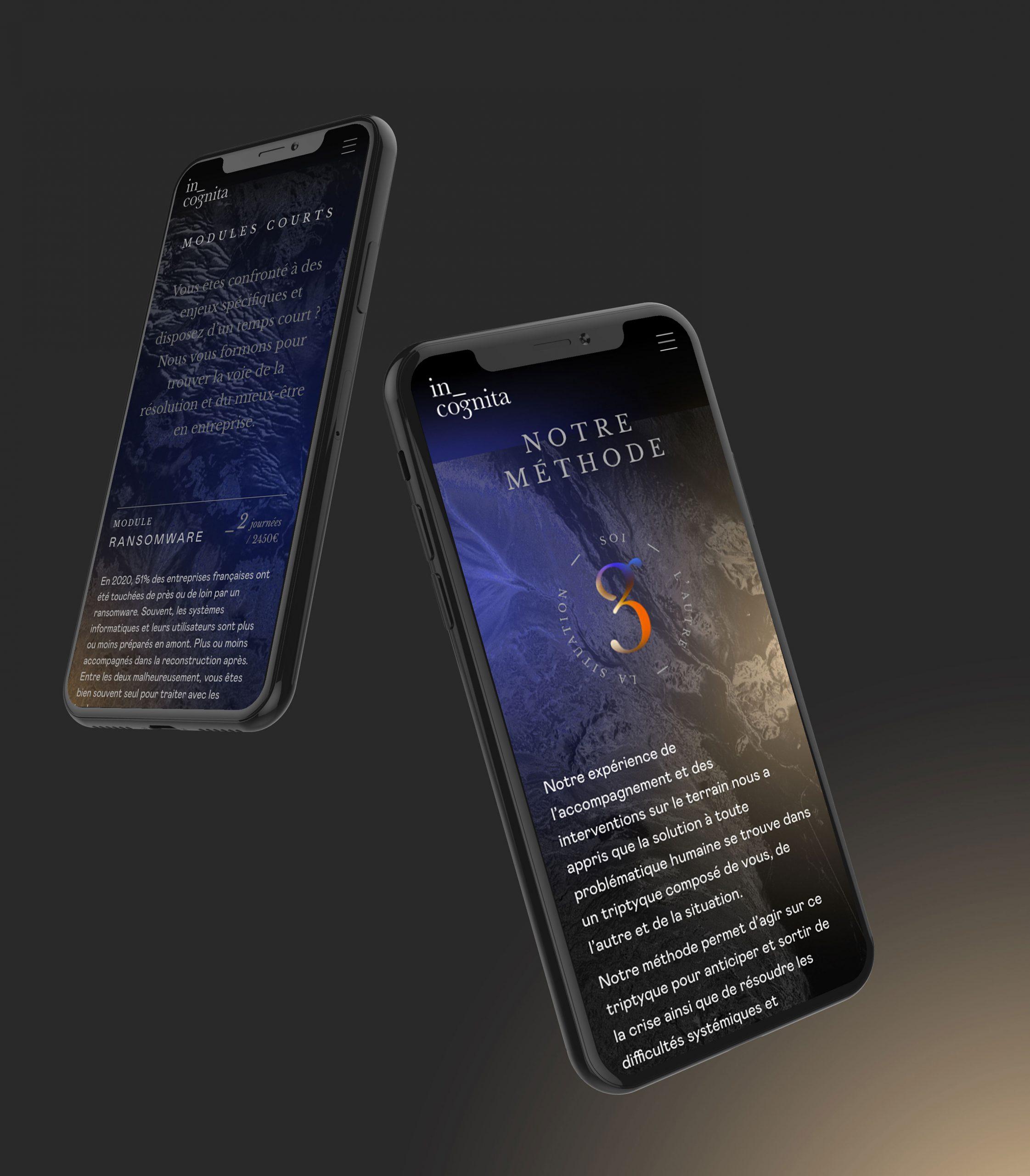 Site mobile In Cognita