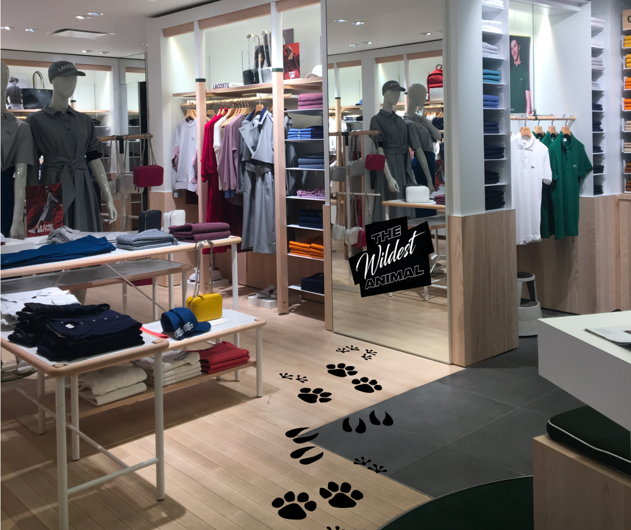 Activation boutique stickers Lacoste x National Geographic What makes you wild?
