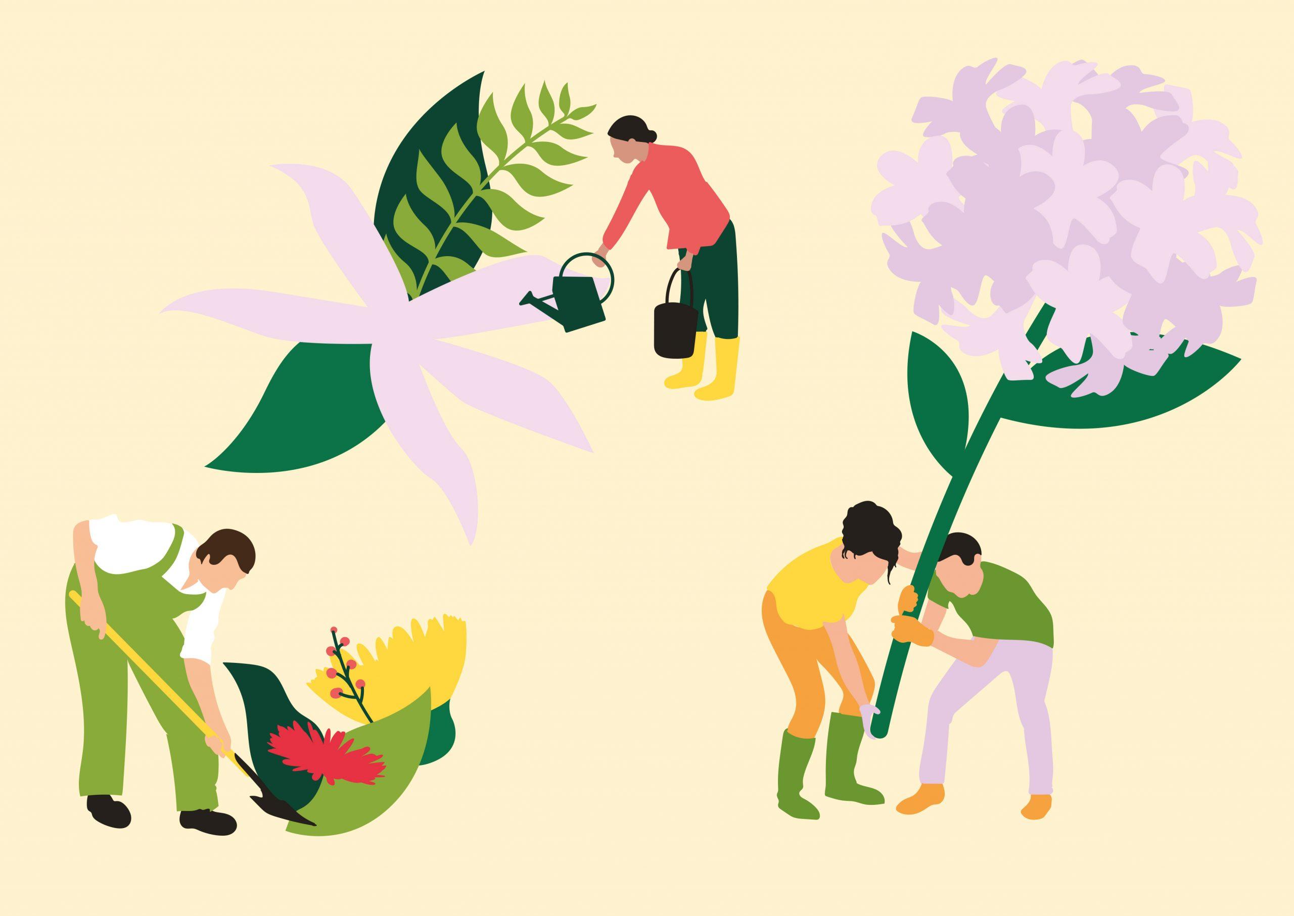 CNVVF villes villages fleuris illustration jardinage